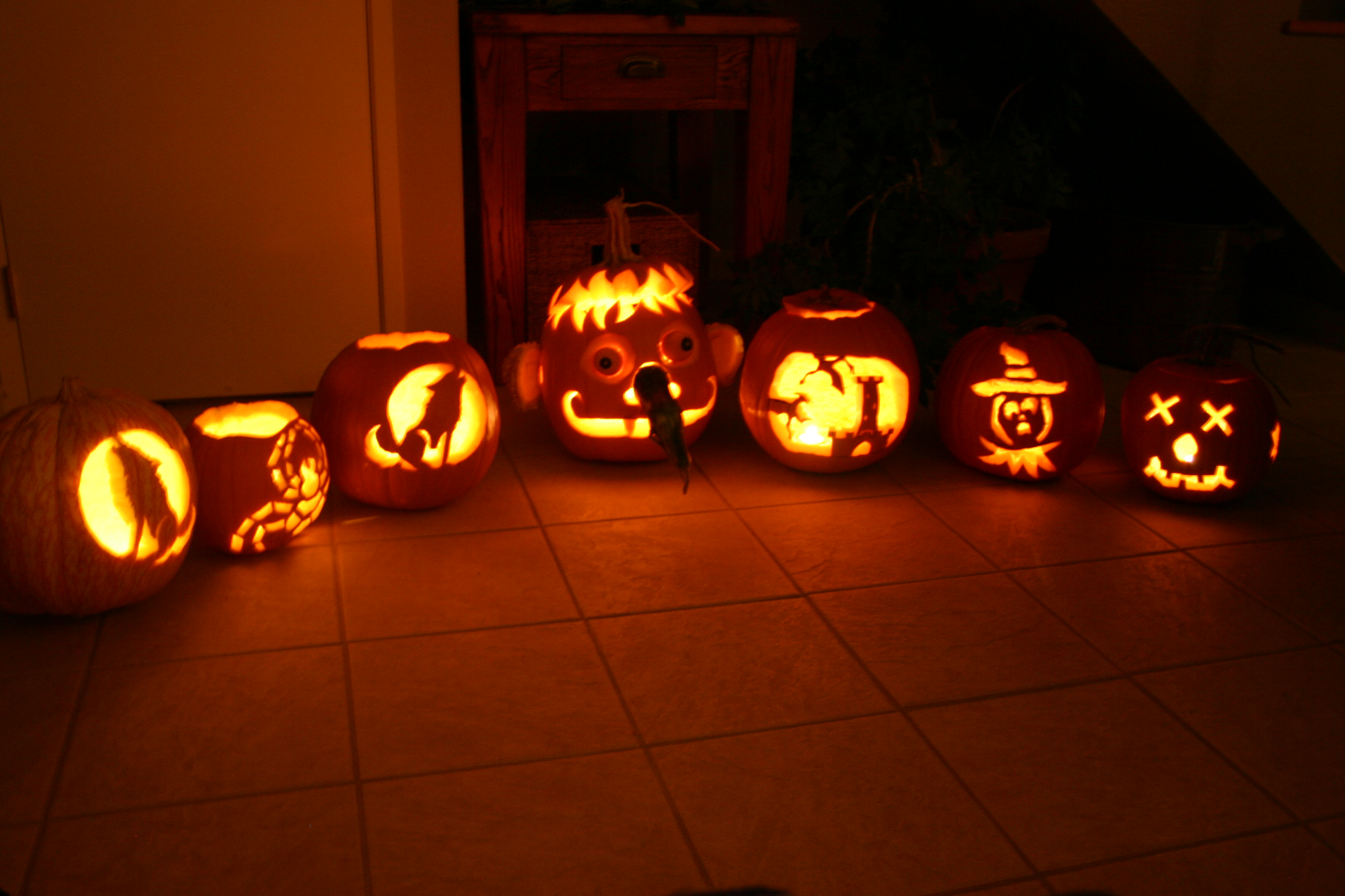 2006 Lab Pumpkins