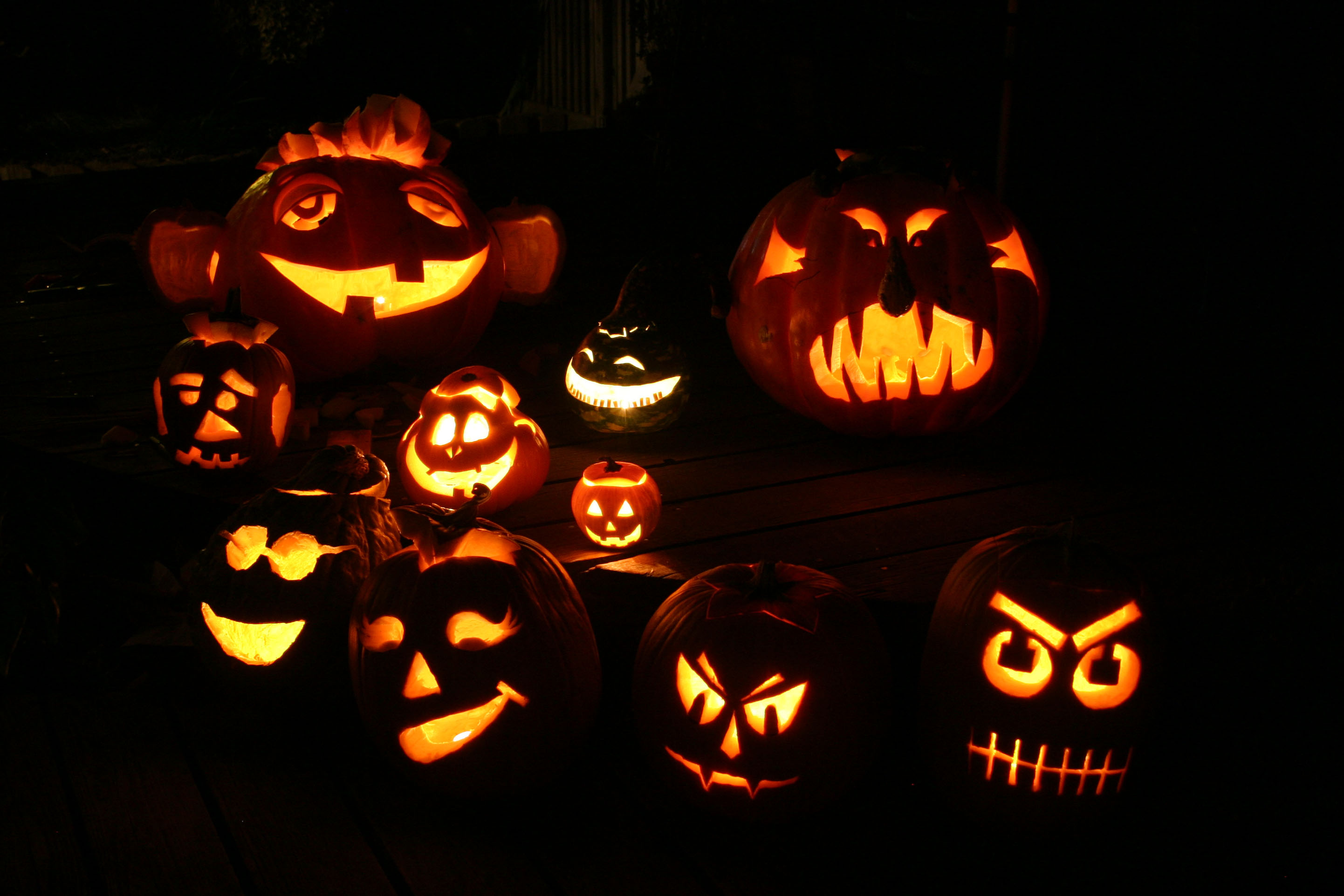 2007 Lab Pumpkins