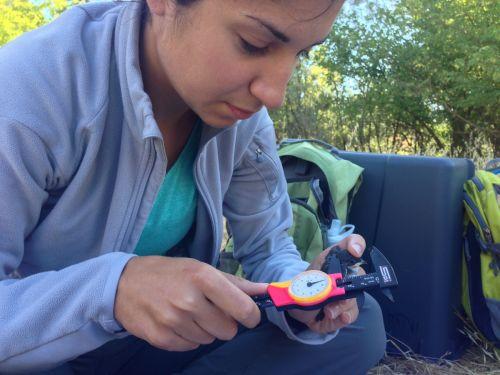 Allison Injaian with tree swallow nestling, 2015